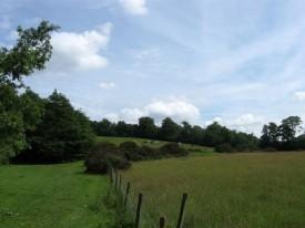 senlac hill