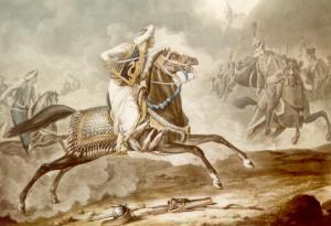 arabian warhorse.png